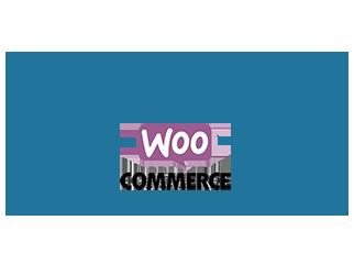 wordpress-webshop
